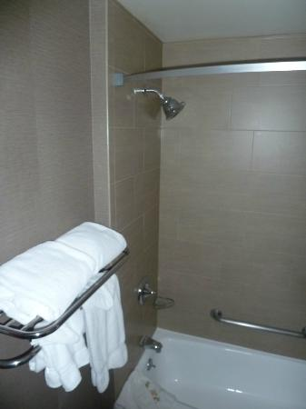 Holiday Inn Newark Airport: bathroom