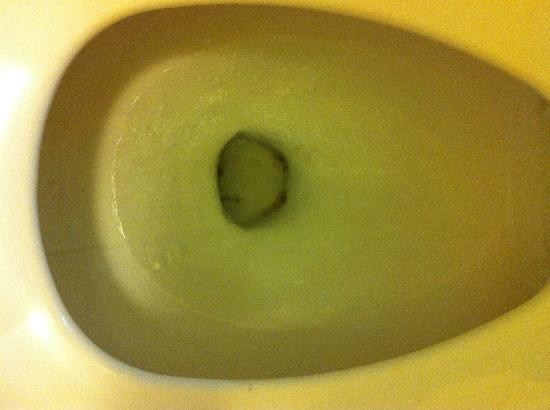 Travelodge Savannah Area/Richmond Hill: badly stained toilet