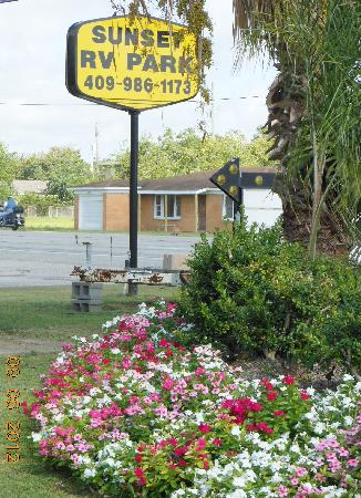 Sunset RV Park: New landscaping