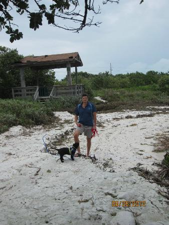 Anne's Beach: anns beach