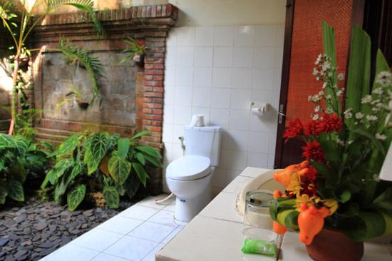 Garden View Cottage: Open Bathroom