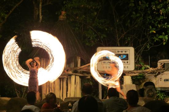 Fire Show, Night Safari