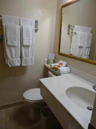 Days Inn Hollywood Near Universal Studios: Clean towels and good selection of bath products