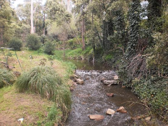 Aldgate Valley Bed and Breakfast: stream below cottage