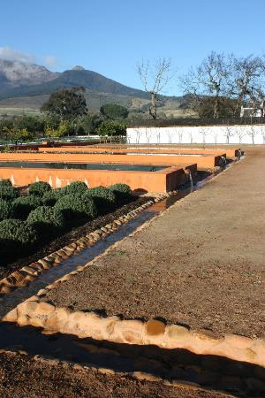 Babylonstoren: Irrigation