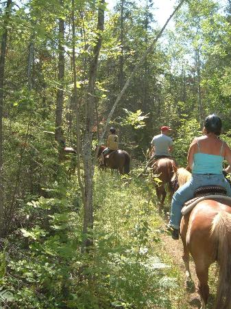 Honora Bay Riding Stables: Renegades trail