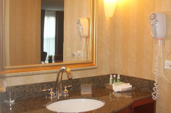 Homewood Suites by Hilton Lincolnshire : Bathroom area