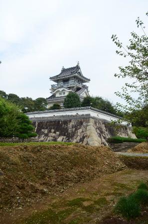 Koyama Castle: 小山城