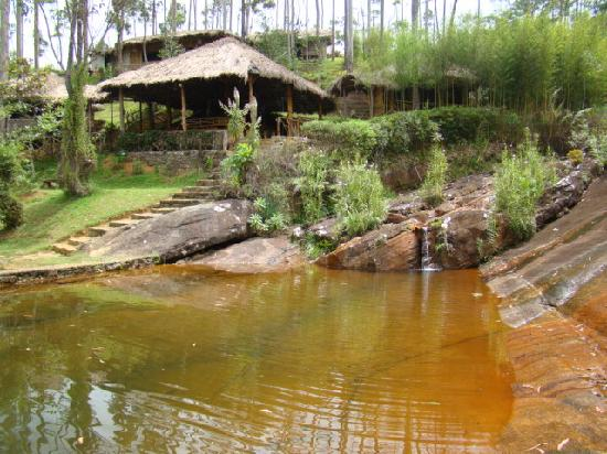 Tea Hill's Bungalow: Relaxing with the nature