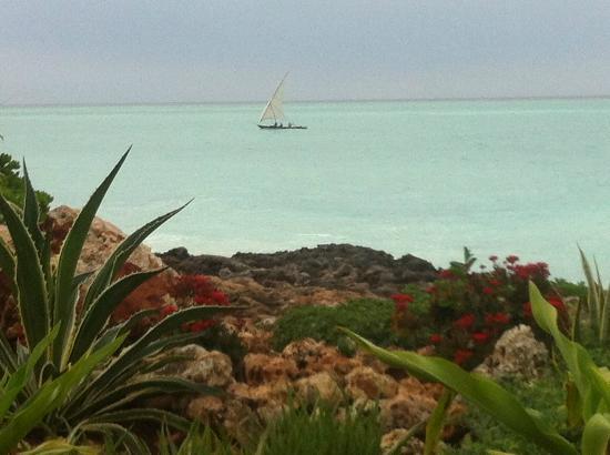 Essque Zalu Zanzibar: Bateau de pêcheur vu depuis le jardin