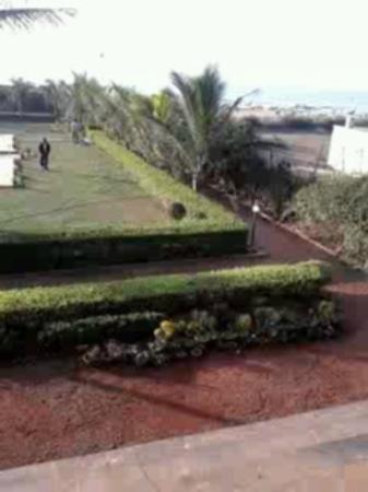 Dalmia Atithi Vihar: garden area