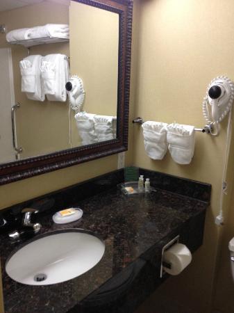 Holiday Inn Downtown Everett: Bathroom