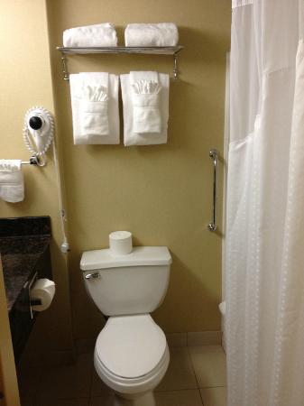 هوليداي إن داون تاون - إفريت: bathroom