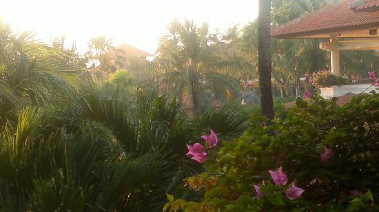 巴厘比諾阿華美達度假村照片