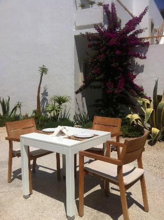 Ammos Hotel: garden