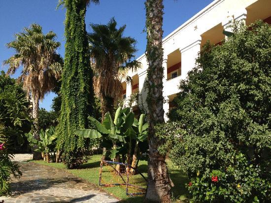 Apollon Hotel: il giardino