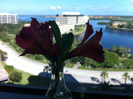Westin Tampa Bay: View with flowers they brought with breakfast