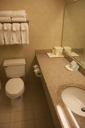 Comfort Suites: coin wc