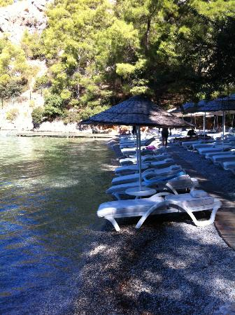 Hillside Beach Club: spiaggia