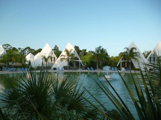 Pyramids in Florida: Pool