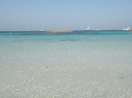 Oasis Sailing Cruises in Formentera: mare splendido