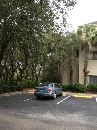 Courtyard Tampa North/I-75 Fletcher: side of hotel- neat!