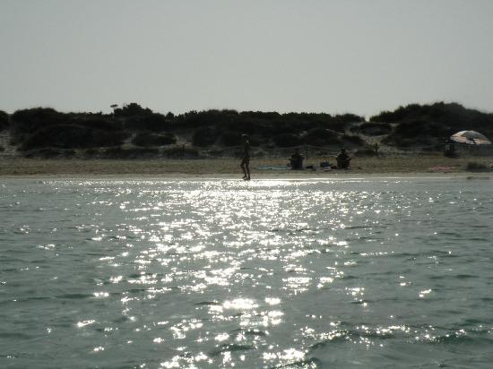 Oasis Sailing Cruises in Formentera: alba a formentera