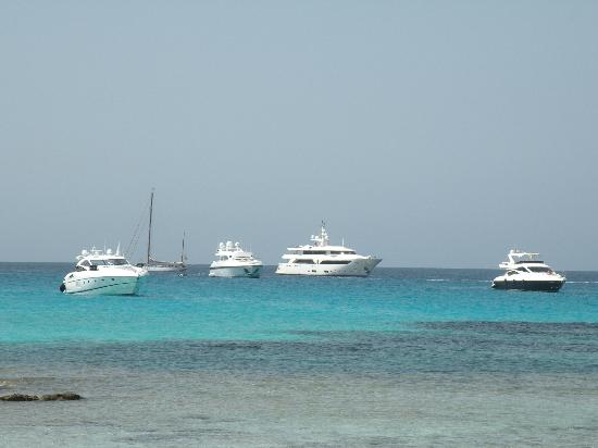 Oasis Sailing Cruises in Formentera: top