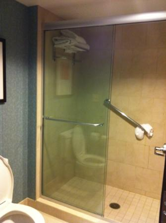 Hyatt Place Pittsburgh-North Shore : shower in king room