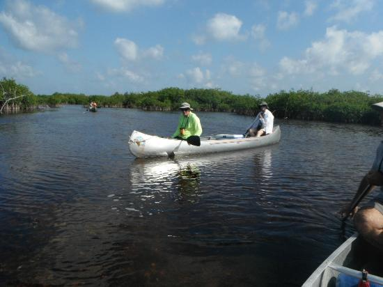 Mexico Silvestre Cozumel Wilderness Outfitter - Day Tours: H and S.