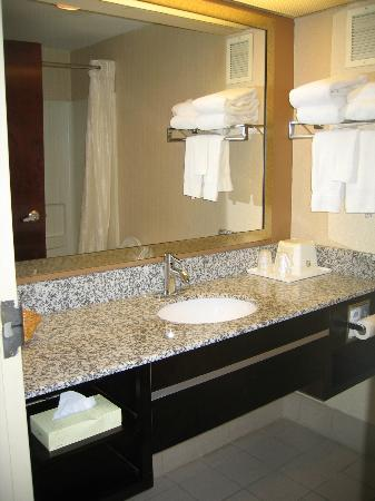 BEST WESTERN Knoxville Suites: Bathroom