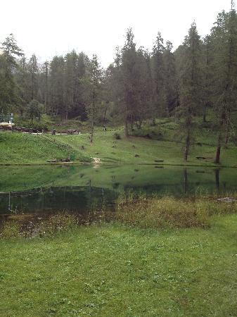 Ristorante Lago Scin: il laghetto