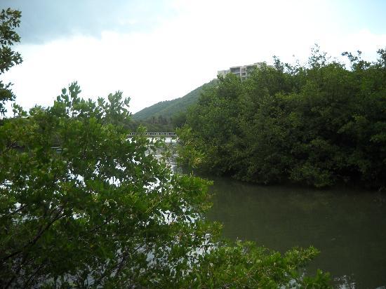 Hotel Los Veleros: Vista de laguna desde el hotel