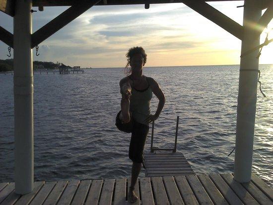 Sharpe Yoga: Utthita Hasta Padangusthasana