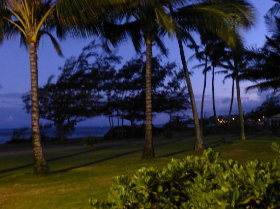 Hotel Coral Reef: coucher de soleil devant l'hotel