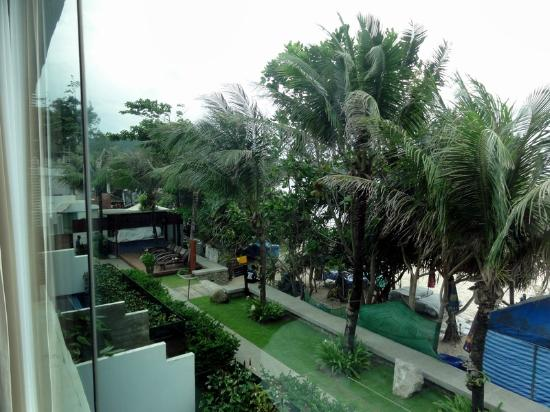 "La Flora Resort Patong: the trees outside the other ""sea view suite"""