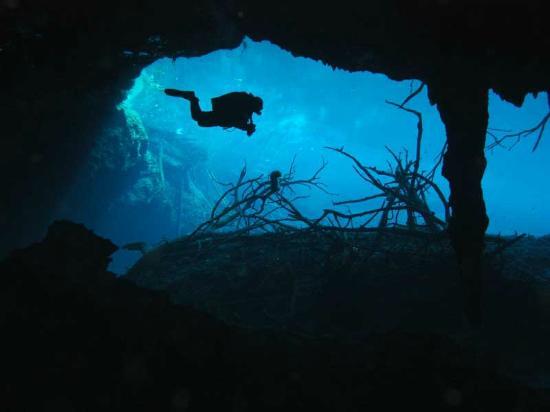 Acuatic Tulum : Buceo de Cavernas