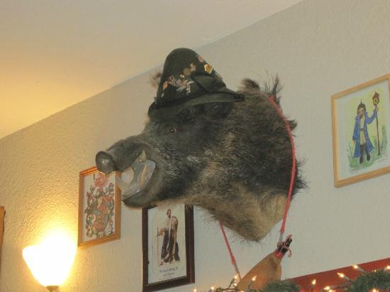 Haus Murphy's: Wild Boar