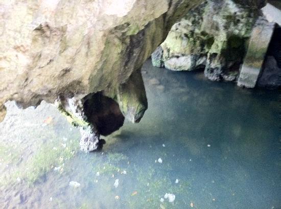 Rio en la entrada de la Cueva de Tito Bustillo