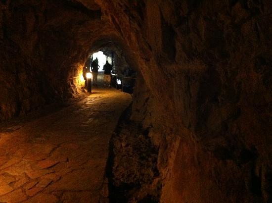 Tito Bustillo : Camino de acceso a la cueva