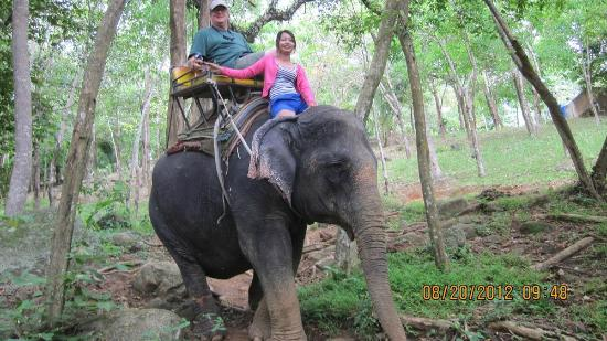 Kok Chang Safari Elephant Trekking: Dscending the hill