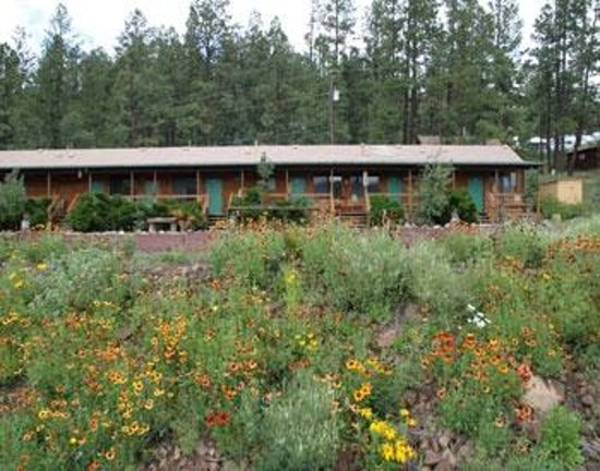 Lazy trout motel updated 2017 prices reviews greer for Cabins near greer az