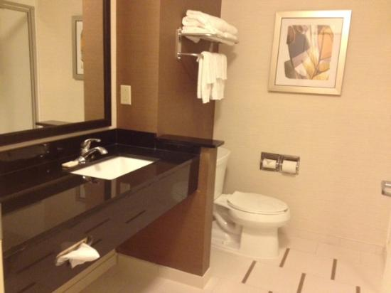 Fairfield Inn & Suites Montgomery Airport South: King Suite Bath - Shower Only