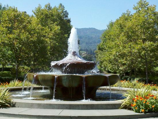 Franciscan Oakville Estate: Beautiful grounds