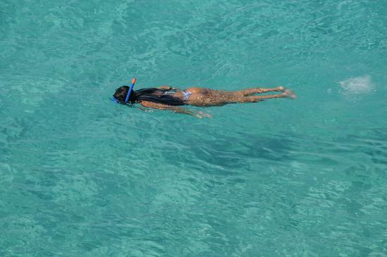 Playa de Ses Illetes: Ses Illetes