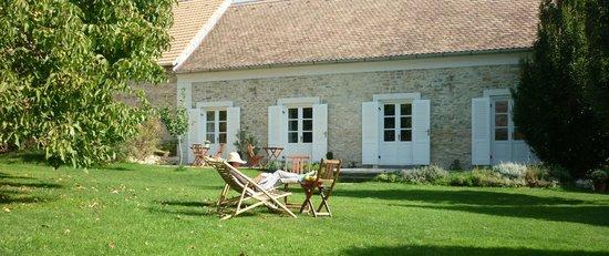 Sarffy House: garden