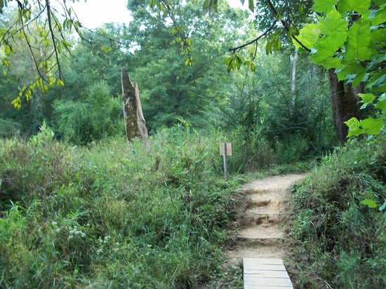 Newnan, Τζόρτζια: Hiking Trail