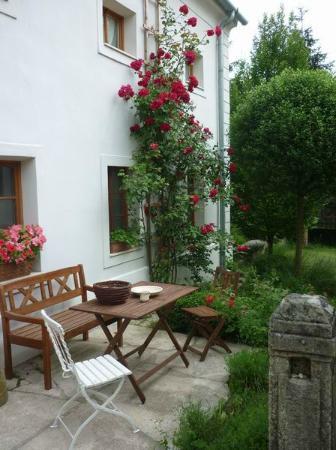 Sarffy House: terrace