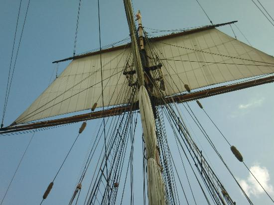 Sail of the Pride of Baltimore II