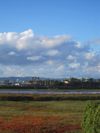 Inn at Playa del Rey - view from our balcony - clouds over the wetlands